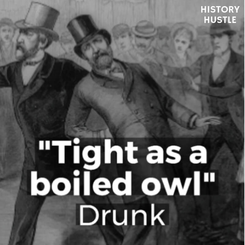 History Hustle Victorian Slang tight as a boiled owl image