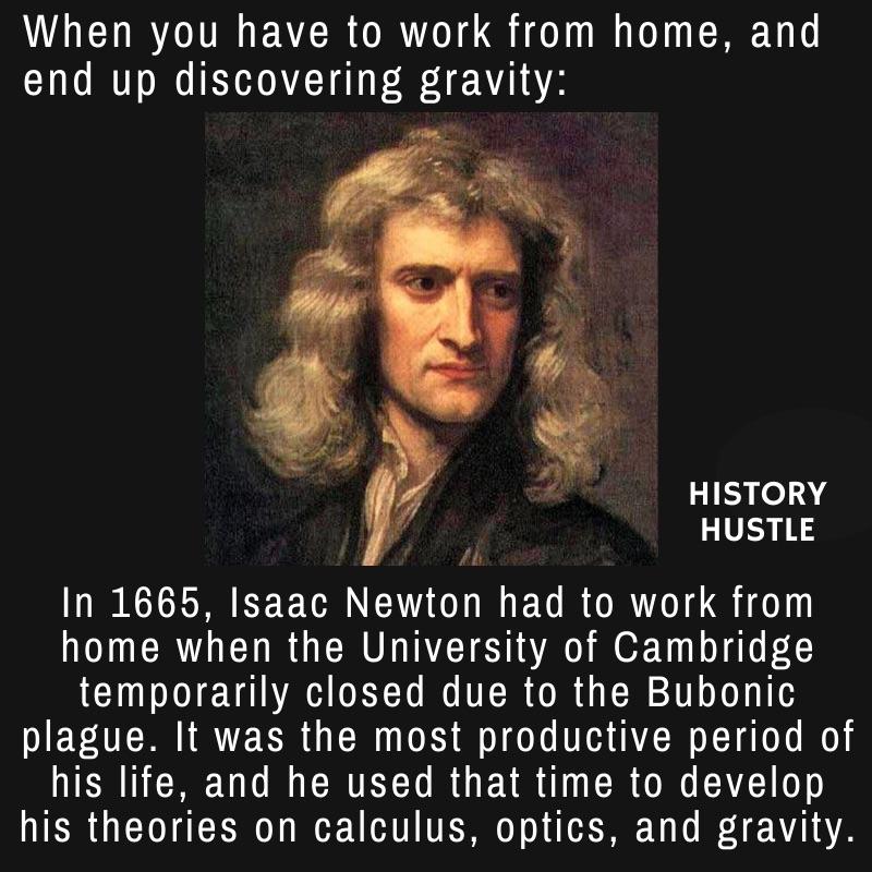 History Hustle Newton plague fact meme image