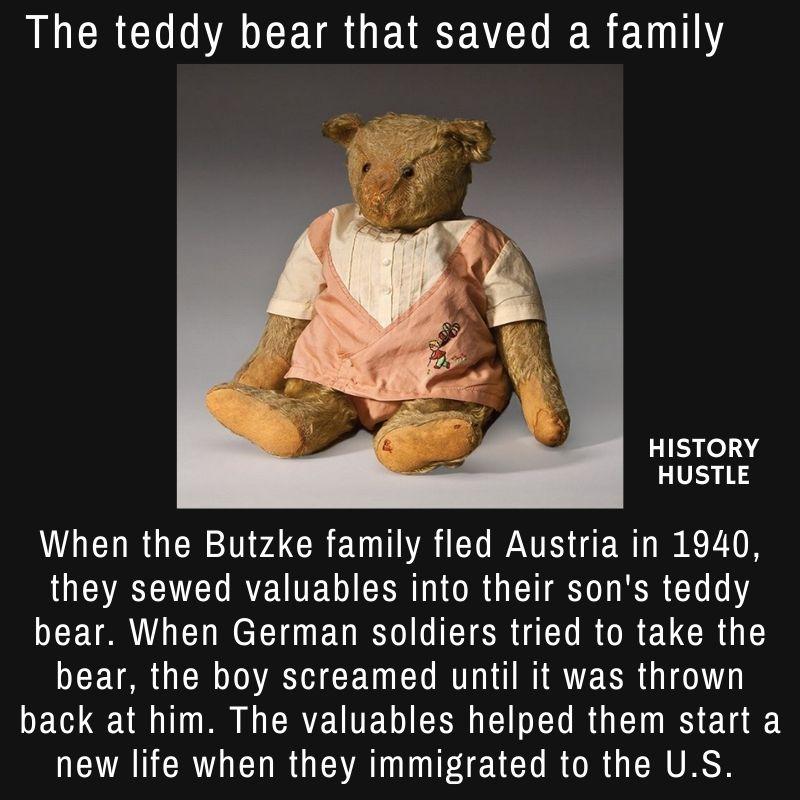 History Hustle teddy bear fact image