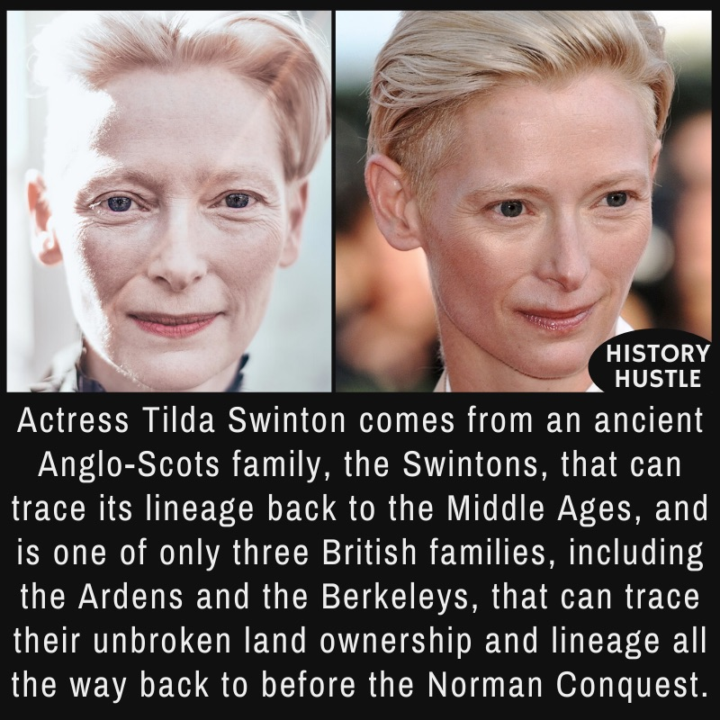 A couple of photographs of Tilda Swinton, a multitalented and multi-awarded Scottish actor