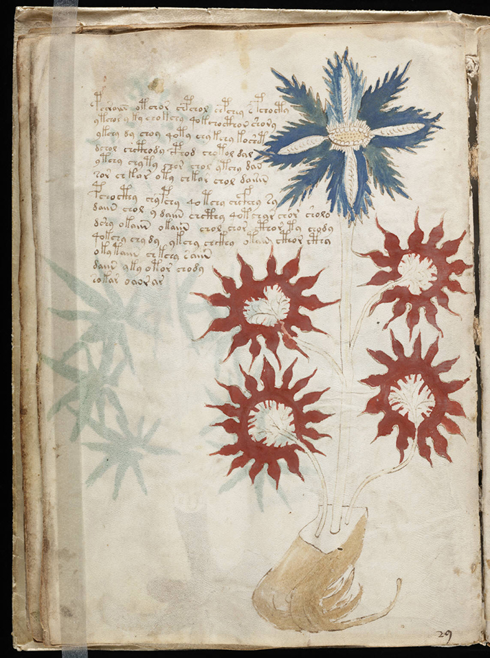 image of Voynich Manuscript, one of the mysterious manuscripts